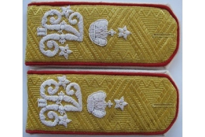 Shoulder straps general suites of His Imperial Majesty, the Emperor Alexander II, for the generals general shape, Russian Empire, Repro