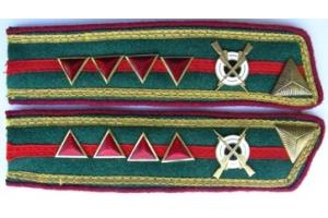 Петлицы старшины пограничных войск НКВД образца 1940 года, СССР, копия