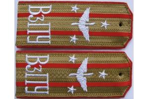 Shoulder straps of the Lieutenant Colonel Aviation VZPU, Russian Imperial Army, WW1, Replica