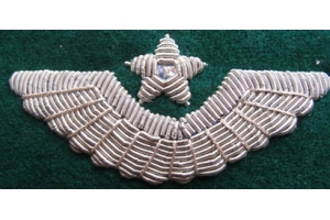 The sewn-on badge on his cap Aviation of border troops, Replica