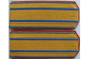 Shoulder straps of the Colonel of Nikolaev Artillery school, Imperial Russian Army, Repro