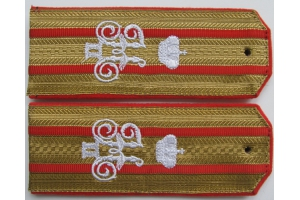 Shoulder boards Colonel-aide-de-camp at the regimental uniform , guards infantry regiments of the Russian Imperial Army type 1914, WW1, Repro