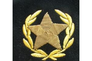 Нарукавная звезда в венке Адмирала Флота СССР , диаметр звезды - 4,5 см , копия
