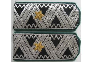 Погоны генерал-директора речного флота 3 ранга образца 1947 года, копия