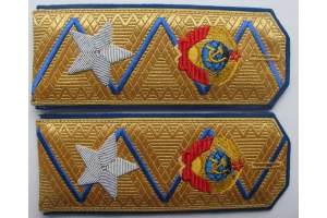 Shoulder straps Commissioner General of State Security type 1943 (shoulder straps Beria), Red Army, WW2, Repro