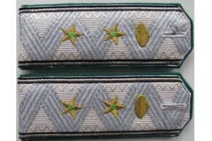 Погоны Генерала-директора пути и строительства 2 ранга образца 1943 года, НКПС, СССР, копия