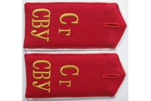 Погоны воспитанников Сталинградского суворовского военного училища, образца 1943 года, СССР, копия